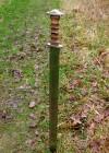frankisch zwaard
